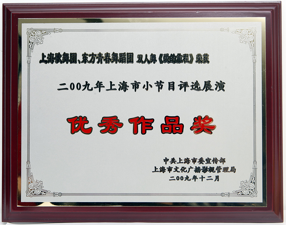 "<span style=""color:#5A5A5A;font-family:SourceHanSansCN-Regular;font-size:14px;"">《爱的旅程》荣获2009年上海市小节目评选展演""优秀作品奖""</span>"